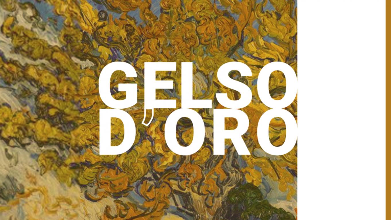 Gelso d'Oro - Cernusco su Naviglio